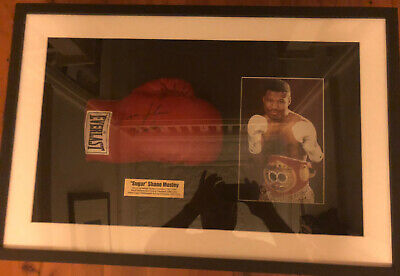 AU490 • Buy Sugar Shane Mosley Framed & Autographed Boxing Glove