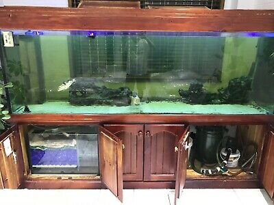 AU650 • Buy Fish Tank With Timber Cabinet