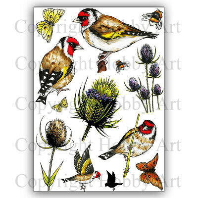 £14.99 • Buy Hobby Art Stamps Goldfinch & Teasels