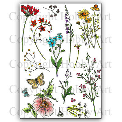 £14.99 • Buy Hobby Art Stamps - Wild Meadow A5 Stamp Set