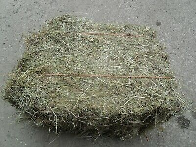 £14.95 • Buy Hay Bale Pet Food 12kg,Rabbits / Guineapig / Sheep Bedding 2019  FREE DELIVERY