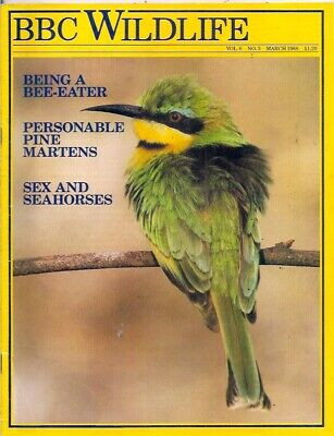 £5 • Buy BBC Wildlife Magazine-MAR 1988-BEING A BEE-EATER.
