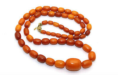 £721.03 • Buy Antique Natural Butterscotch Egg Yolk Baltic Amber Beads Necklace 29.1g.