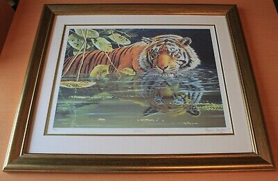 £20 • Buy STEPHEN GAYFORD Limited Edition Tiger Print  Reflections  74/850
