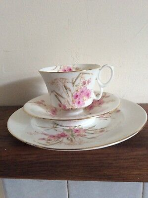 £12.55 • Buy Crown Staffordshire Cup Saucer And Plate