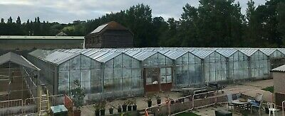 £5000 • Buy Commercial Glass Greenhouses For Sale 3 Units 30mx30m Circa Each -OFFERS INVITED