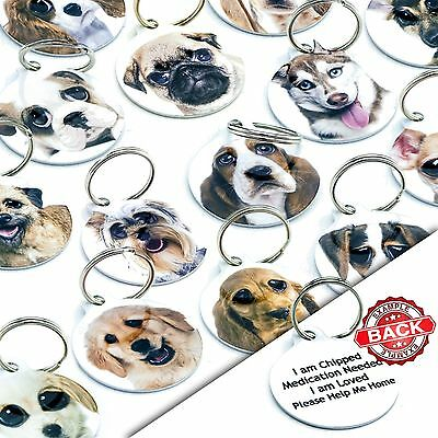 £3.99 • Buy Breed Pet ID Tags Personalised Dog Name Collar Tags Discs Pet Tags Engraved Free