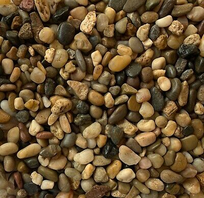 £5.99 • Buy Natural Polished Small River Pebbles Stones Rocks Mixed Colour Water Plant Decor