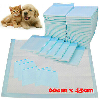 £14.95 • Buy HEAVY DUTY DOG PUPPY LARGE TRAINING WEE WEE PADS PAD FLOOR TOILET MATS 60 X 45cm