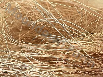 £14.95 • Buy Coco Husk Coconut Nesting Material Quality For Breeding Finch, Birds SIZE OPTION