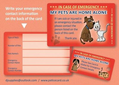 Dog Cat Pet Rescue Home Alone Plastic ICE (In Case Of Emergency) Card & Key Fob • 3.75£