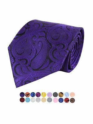 $19.99 • Buy Men's Paisley 100% Microfiber Poly Woven Wedding Neck Tie