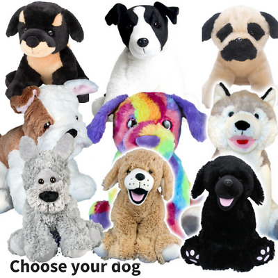 DOG MAKING KITS - Build Stuff Your Own Teddy Bear - For Gift Or Party - 20cm/8   • 11.99£