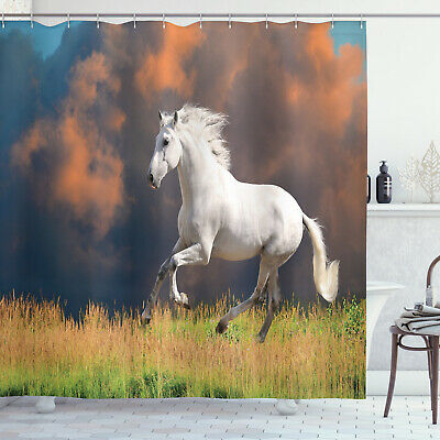 $29.99 • Buy Andalusian Horse And Majestic Dust Cloud Strong Wild Print Shower Curtain Set