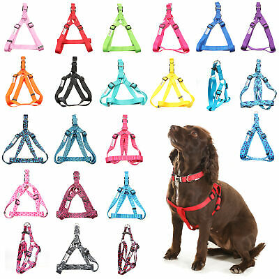 £12.82 • Buy Doodlebone Dog Puppy Harness Adjustable Bold Nylon Lead Rings 5 Sizes 12 Colours
