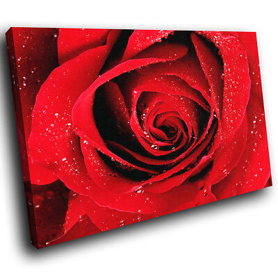 ZAB077 Red Rose Rain Drops Modern Canvas Abstract Home Wall Art Picture Prints • 19.99£