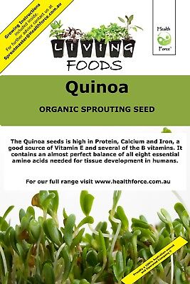 AU29.80 • Buy Quinoa Organic Sprouting Seeds Microgreens Home And Garden Living Foods Plants