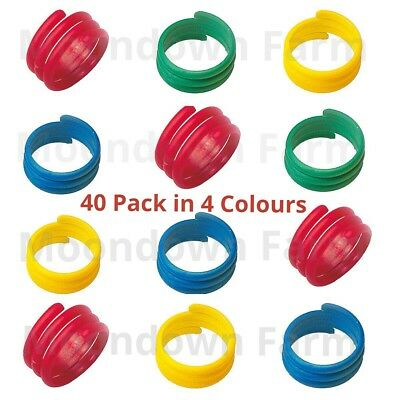 40 X 18mm In 4 COLOURS SPIRAL LEG RINGS FOR POULTRY, CHICKEN, DUCKS, GEESE Etc • 8.85£