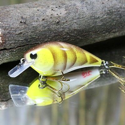 fishing lure paint