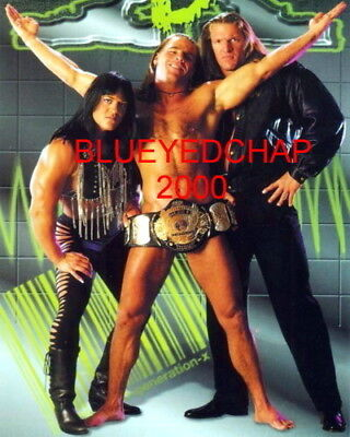 $ CDN12.67 • Buy Chyna-triple H & Shawn Michaels Wrestler 8 X 10 Wrestling Photo Wwf