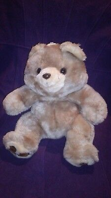 Pot Belly Bear Compare Prices On Dealsan Com