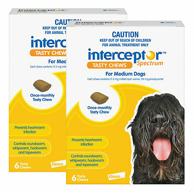 View Details Interceptor Spectrum For Dogs 11-22kg Yellow 12 Chews • 74.00AU