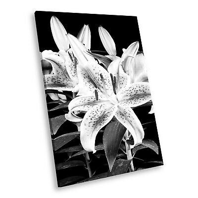 AB100 Flower Black White Abstract Portrait Canvas Picture Prints Small Wall Art • 14.99£