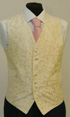 £9.60 • Buy Mens/boys Ivory And Gold Floral Waistcoat Party/wedding/prom W - 1081