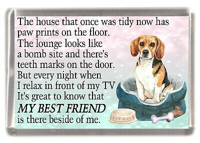 Beagle Dog Fridge Magnet  MY BEST FRIEND POEM  Novelty Gift By Starprint • 3.10£