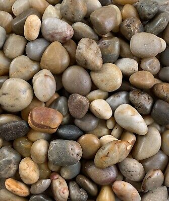 £8.99 • Buy Natural Polished Large River Pebbles Stones Rocks Mixed Colour Water Plant Decor