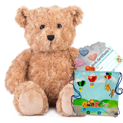 CLASSIC BROWN BEAR - 16 /40cm BUILD A TEDDY BEAR MAKING KIT - No Sew • 14.99£