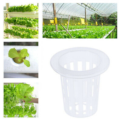 $ CDN16.42 • Buy 30pcs High Quality Planting Hydroponics Slotted Mesh Pots Cultivation Net Cups