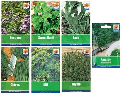 £6.95 • Buy 7 Packs Garden Herb Collection Seeds Oregano Basil Chive Sage Parsley Thyme Dill