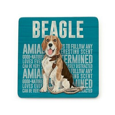 Beagle Coaster Gift/Present Dog • 2.95£