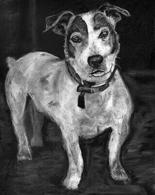£15 • Buy Jack Russell Wall Art Print,Dog Owner Gift Charcoal Drawing Artist Signed A4 A3