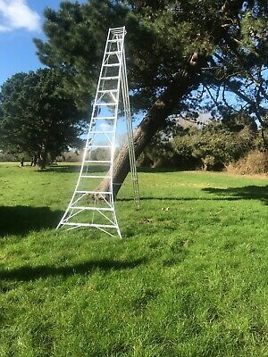 £350 • Buy Tripod Ladder Aluminium 5m Arborists Garden Orchard Hedging Lopping And Pruning