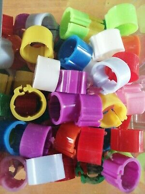 10x ETON POULTRY CHICKEN HENS CHICK PIGEON 8MM CLIC CLIP LEG RINGS MIXED COLOURS • 2.10£