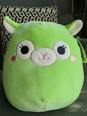 $ CDN30 • Buy Squishmallows 12  Inch Kimberly Lime Girl Alpaca VHTF 2020 Summer Squishmallow