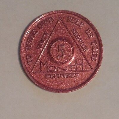 $2.30 • Buy Aa Aluminum Alcoholics Anonymous 5 Months Sobriety Chip Coin Token Medallion