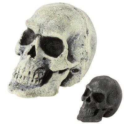Foam & Latex Mini Shrunken Skull Throwing Weapon - Perfect For LARP Events • 8.99£