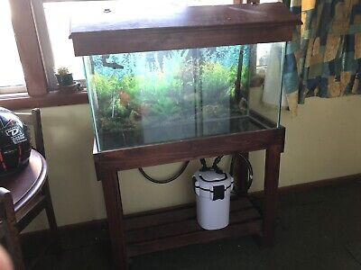 AU400 • Buy 4ft Fish Tank An Canister Filter