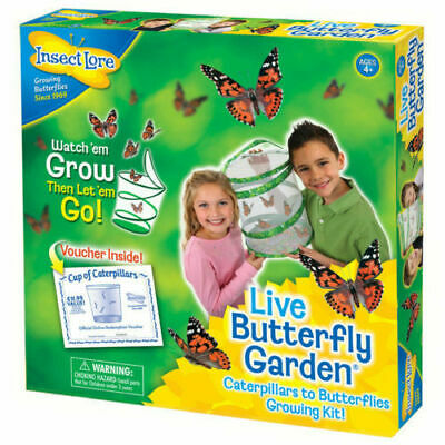 Insect Lore Live Butterfly Garden Hatching Kit Indoor Outdoor • 19.99£