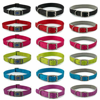 Ancol Viva Dog Puppy Nylon Collars Quick Fit Buckle Neoprene Padded 6 Colours • 4.75£