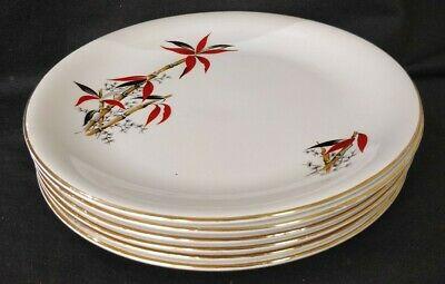 Vintage / Retro 6 BARRATTS Delphatic China 'BAMBOO' 10  DINNER PLATES 1950's • 22£