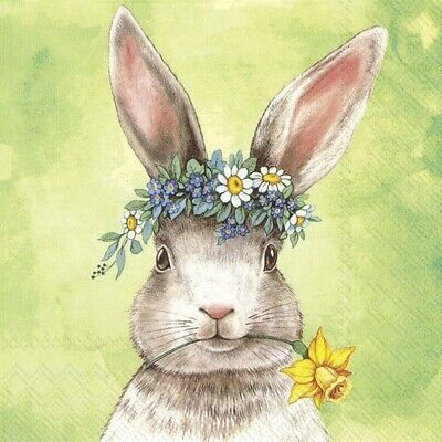 4 X Single Paper Napkins/3 Ply/Decoupage/Easter Friends Bunny • 1.25£