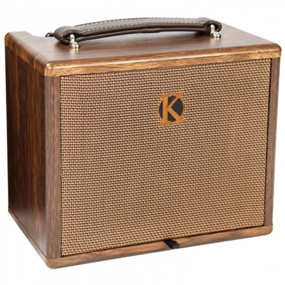 $ CDN232.68 • Buy Kinsman 25W Acoustic Guitar Amp With Effects - Mains / Battery Powered