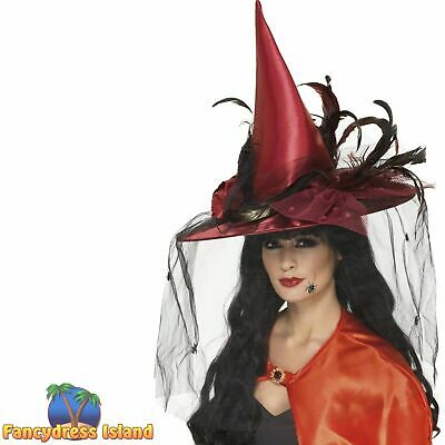 Witch Hat Net And Feathers Halloween Wizard Magic Women's Fancy Dress Costume • 7.99£