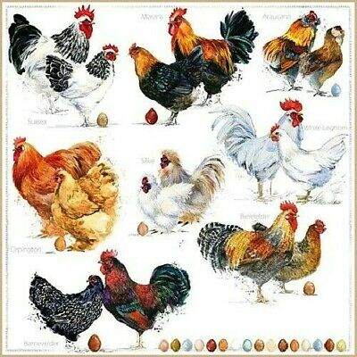 4 X Single Paper Table Napkin/3-Ply/Decoupage/Easter/Birds/Assorted Chickens • 1.25£