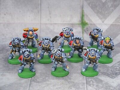 40k Space Marines Space Wolves TACTICAL SQUAD 10 Figures Painted GW 73267 • 14.99£