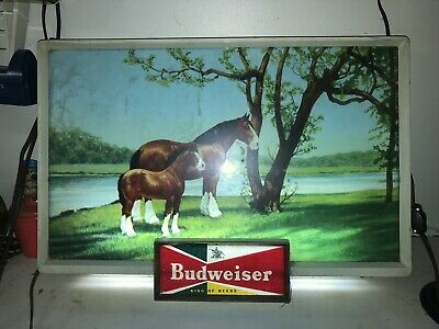 $ CDN358.44 • Buy Rare Vintage Budweiser Beer Advertising Lighted Electric Sign Clydesdale 1950's